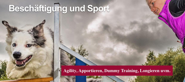 beschaeftigung-und-sport-thomas-suster
