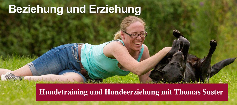 hunde-beziehung-und-erziehung-thomas-suster
